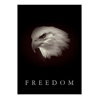 Póster La libertad pardusca American Eagle hace frente a