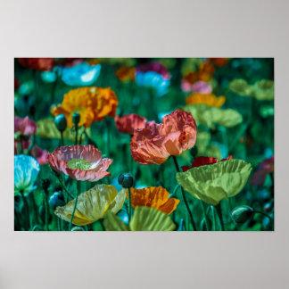 Póster La oficina de la flora del arco iris personaliza