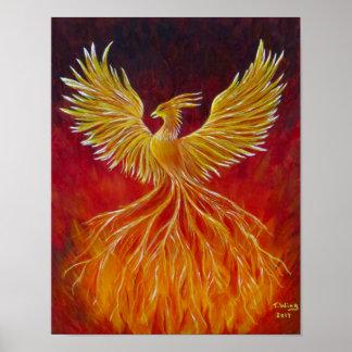 Póster La Phoenix