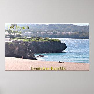Póster La República Dominicana vara el poster