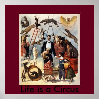 Póster La vida es un circo