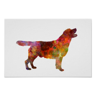 Póster Labrador retriever 01 in watercolor 2