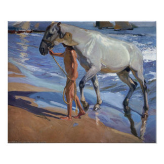 Póster Lavar el caballo