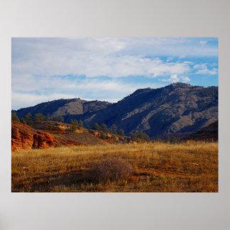 Póster Lince Ridge