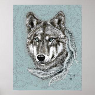 Póster Lobo gris