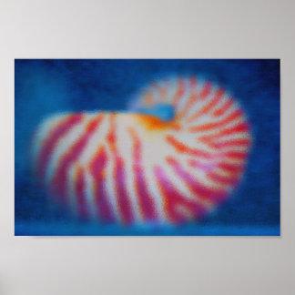 Póster Mar Shell