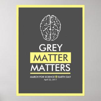 Póster Materias de la materia gris