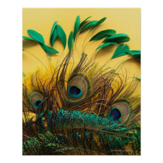 Póster Muchas diversas clases de plumas en un amarillo
