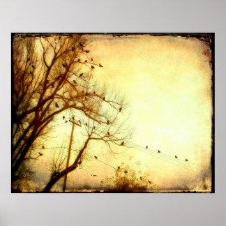 Póster Multitud abstracta de pájaros