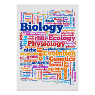 Póster No. 7 de Wordle de la biología