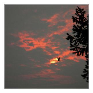 Póster Nunca más el cuervo…