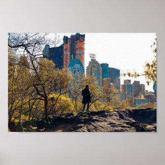 Póster Opinión NYC del Central Park de la casa de Essex
