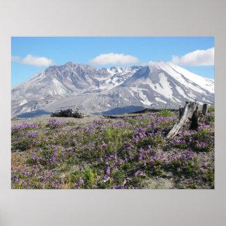 Póster Paisaje de la primavera del Monte Saint Helens