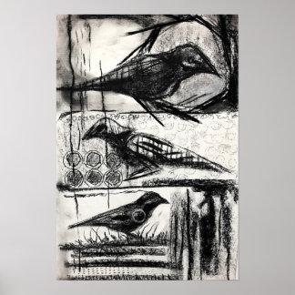 Póster Pájaros en poster de las cajas