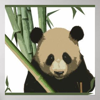 Póster Panda de bambú