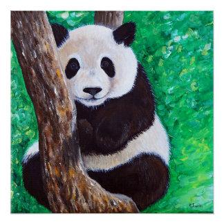 Póster Panda en un árbol