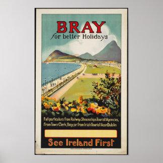 Poster para el rebuzno, Irlanda del viaje del Póster