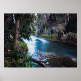 Póster Paraíso tropical del río de la Florida