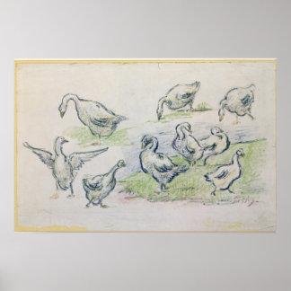 Póster Patos de Alfred Sisley el  