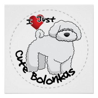Póster Perro divertido y lindo adorable feliz de Bolonka