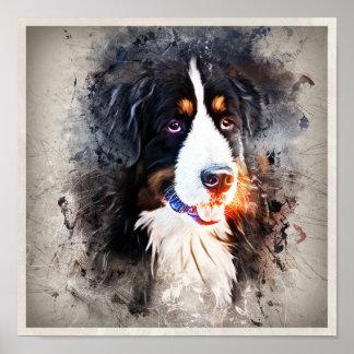Póster Perro, perro san bernardo - Saint Bernard Dog