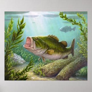 Póster Pescados bajos