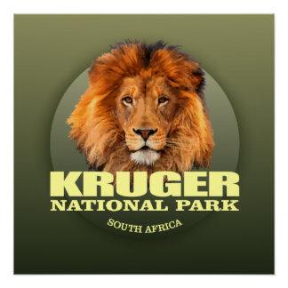 Póster PESO de Kruger NP (león)