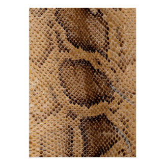 Póster Piel de serpiente
