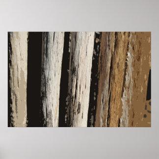 Póster piel vol. 13 del saguaro