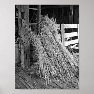 Póster Pilas blancos y negros del trigo de la foto de la