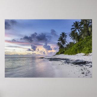 Póster Playa tropical en la puesta del sol