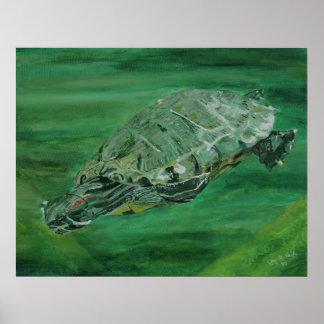 Póster Poster de la cala de la tortuga