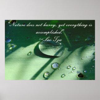 Póster Poster de la cita de la naturaleza de Tzu del Lao