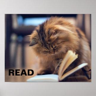 Póster Poster de la lectura para apoyar la instrucción en