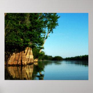 Póster Poster de la mañana del río de Cypress