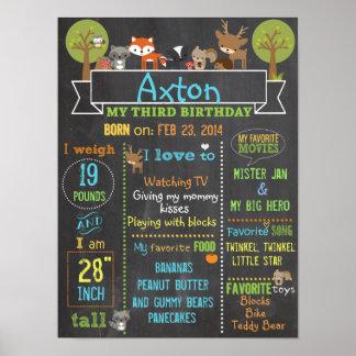 Póster Poster de la muestra del cumpleaños del fiesta del