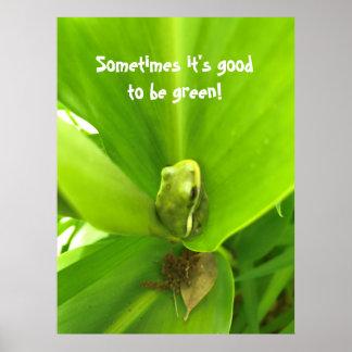 Póster Poster de la rana verde