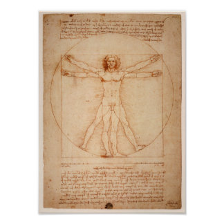 Póster Poster de Leonardo de Vinci Drawing