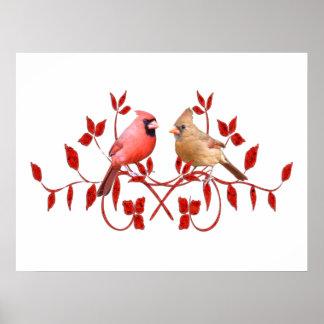 Póster Poster de los pájaros del amor