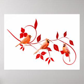 Póster Poster de tres cardenales