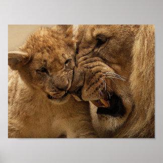 Póster Poster del león del padre y del hijo