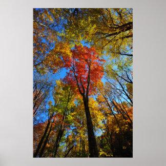 Póster Poster del otoño