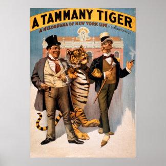 Póster Poster del vintage del tigre de Tammy