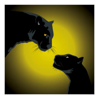 Póster Poster doble de las panteras negras