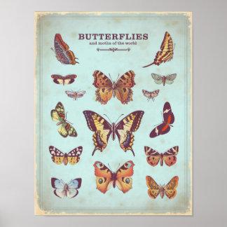 Póster Poster elegante lamentable de las mariposas de la