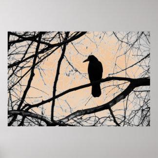 Póster Poster gótico del cuervo
