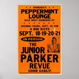 Póster Poster menor del concierto del salón de la