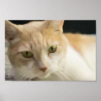 Póster Poster poner crema del valor del gato de Tabby