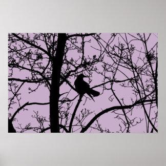 Póster Poster solitario del mate del cuervo