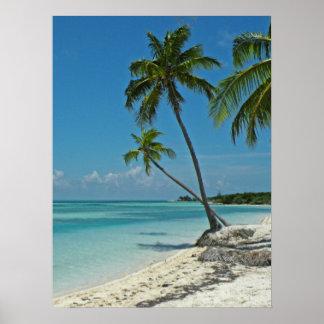 Póster Poster tropical de la playa